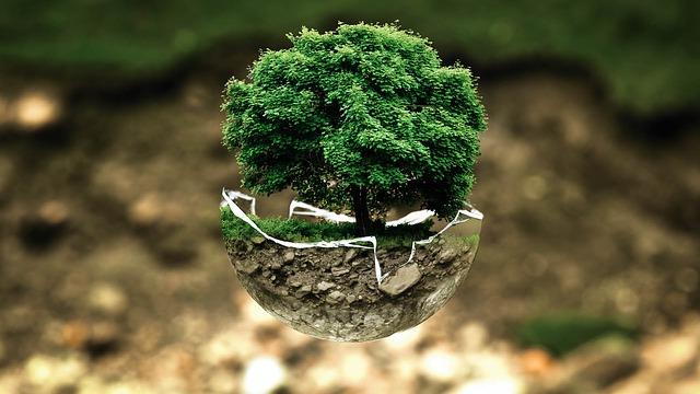 malý stromeček