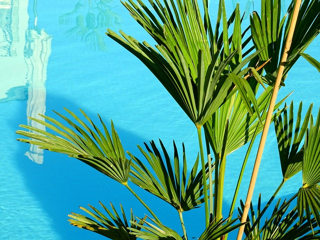 Chránit bazén před nečistotou není těžké